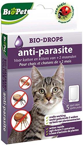 bsi-15108-biopet-bio-gocce-senza-pulci-insetticida-gatto