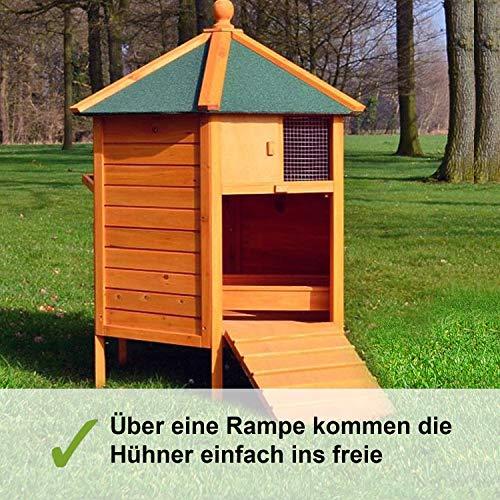 Zooprimus – Hühnerhaus Pavillon - 5