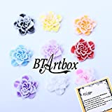 BTArtbox 3D Resin Slices Fimo Slice Rose Flower Nail Art Tips UV Acrylic Nails Decoration Wheel