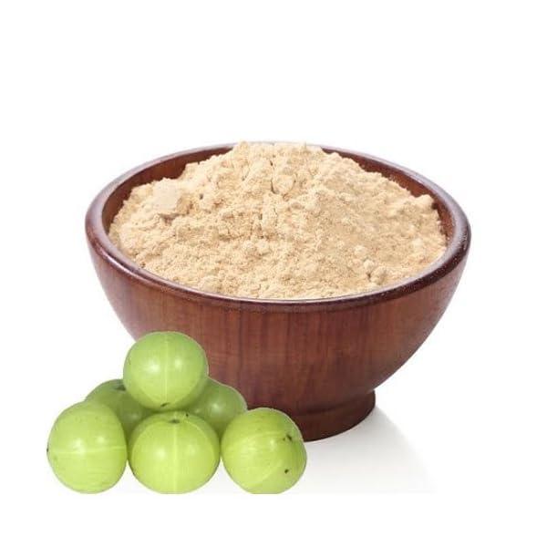 Organic AMLA Powder - Indian Gooseberry - Soil Association Certified 2