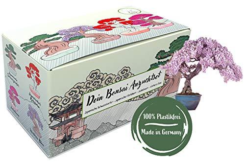 Bonsai Anzuchtset - Bonsai Starter Kit mit 4 Sorten Bonsai Baum Samen, perfektes nachhaltiges Gechenk Set zu jedem Anlass, einzigartiges Geschenk für Frauen und Männer