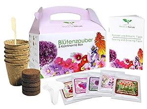 Geschenk Anzuchtset: Blütenzauber 5 Kontinente Box - zum Selberzüchten oder zum Verschenken - eine originelle Geschenkidee für praktisch jeden Anlass