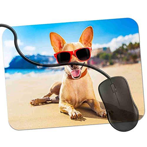 Gaming Mauspad Kühle Chihuahua-tragende Sonnenbrille auf Strand Fransenfreie Ränder spezielle Oberfläche verbessert Geschwindigkeit und Präzision rutschfest 2K703