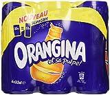 Orangina Canettes 6 x 33 cl