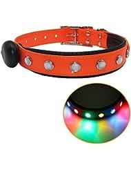 Impermeable LED Collar de perro Light Up Collar de seguridad de la noche USB Flash recargable Colorido Luz Pet collar para la caza Hecho de tejido con revestimiento de PVC