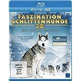 Faszination Schlittenhunde 3D - Das große Rennen
