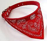 Dog Bandana Collar- Adjustable Pet Cat Neckerchief- 4 Sizes & 6 Colours Available (Red, Medium (29-34cm))
