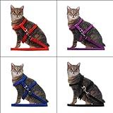nicebuty Leine Halsband + Geschirr verstellbar anti-traction Nylon Halsband, reflektierend mit Ring aus Legierung für Katzen Kätzchen Länge 1.2m 4Farben zur Auswahl