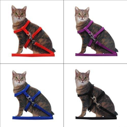 nicebuty Leine Halsband + Geschirr verstellbar anti-traction Nylon Halsband, reflektierend mit Ring aus Legierung für Katzen Kätzchen Länge 1.2m 4Farben zur Auswahl (Misc.)