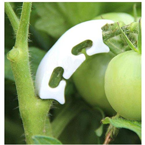 su-luoyu 10 pcs Pflanzenclips PflanzenbinderPflanzenklammern 3.8 CM * 0.8 CM * 1CM Ideal für Pflanzen Sicherung Unterstützt Einzupflanzen (Für Sonnencreme Clip)