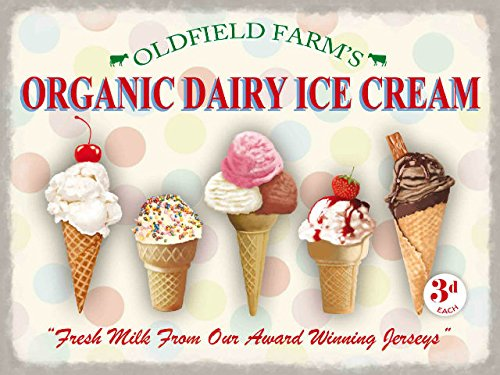 CALAMITA FRIGO - Organic Dairy Ice Cream - regalo decorazione 10367