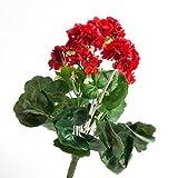 artplants Künstliche Geranie MIEKE auf Steckstab, Rot, 30 cm, Ø 25 cm - Geranien künstlich/Kunstblumen