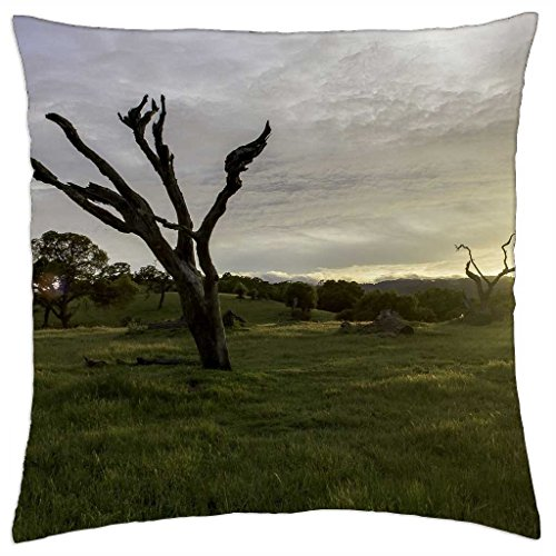 woodside, ca - Throw Pillow Cover Case (18\