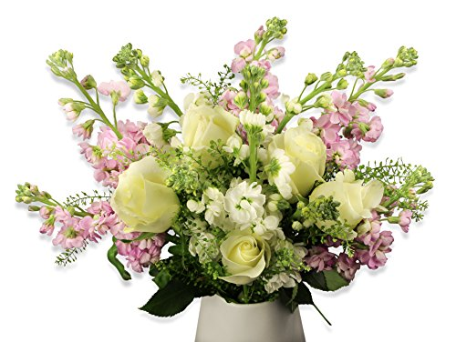 Beards & Daisies Fresh Scented Seasonal Flowers - Handwritten Card & Free UK Delivery – Send a Beautiful Bouquet of Flowers Arranged by a Skilled Florist - Freshly Cut Birthday, Thank You, New Home