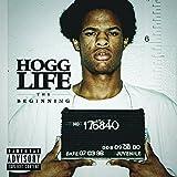 Hogg Life:the Beginning