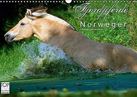 Fjordpferde - Norweger (Wandkalender 2017 DIN A3 quer): Kalender Fjordpferde