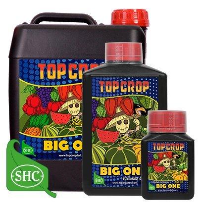 Big One 250 ml