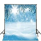 1.5x2.1m weiß Tree blau Verschneite Landschaft Fotografie Hintergrund Winter Foto Hintergrund