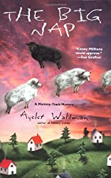 The Big Nap (Mommy-Track Mystery) by Ayelet Waldman (2001-06-01)