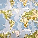 Stoff Meterware Baumwolle Weltkarte hellblau grün Erde