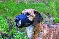 Trixie Muselière en Polyester avec Partie Maillée Jack Russell Terrier pour Chiens