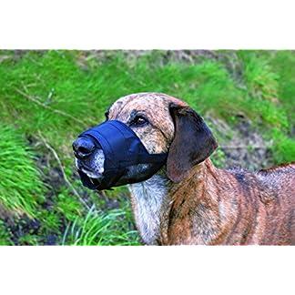 Adjustable Dog Muzzle for Dog Training Size 2 Adjustable Dog Muzzle for Dog Training Size 2 51wtZH2u4sL