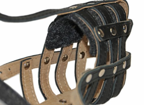 Dean-Tyler-Pit-Bull-Royal-Leather-Padded-Muzzle