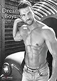 Dream Boys 2019 - Fotokalender, Erotikkalender, Wandkalender A3-29,7 x 42 -