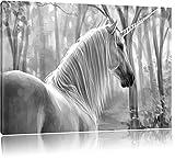 Einsames Einhorn im Wald Kunst B&W, Format: 60x40 auf Leinwand, XXL riesige Bilder fertig gerahmt mit Keilrahmen, Kunstdruck auf Wandbild mit Rahmen, günstiger als Gemälde oder Ölbild, kein Poster oder Plakat