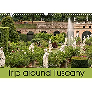 Trip to Tuscany (Wall Calendar 2020 DIN A3 Landscape): From Pisa and Lucca to Florence (Monthly calendar, 14 pages ) (Calvendo Places)