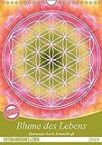 Blume des Lebens - Harmonie durch Symbolkraft (Wandkalender 2019 DIN A4 hoch): Heilende Energien mit der Flower of Life (Monatskalender, 14 Seiten ) (CALVENDO Kunst) - Gaby Shayana Hoffmann