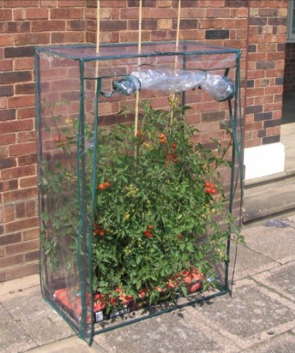 Tomaten-Gewächshaus zum Schutz vor Kälte und Nässe aus Stahl 101x51x148cm (Tomate-schutz)
