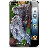 Coque de Stuff4 / Coque pour Apple iPhone 5/5S / Koala Design / Animaux sauvages Collection