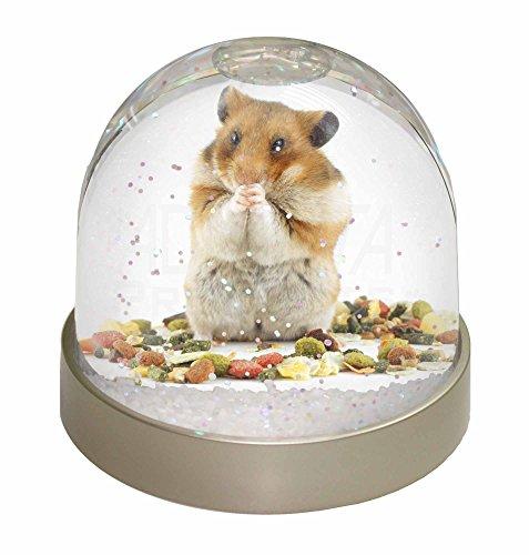 Lunch Box Hamster Schneekugel Globus Wasserball Tier Weihnachtsgeschenk