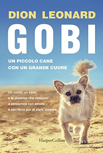 Gobi, un piccolo cane con un grande cuore
