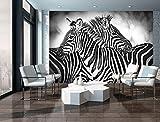 FORWALL Fototapete Tapete Zebras P4 (254cm. x 184cm.) Photo Wallpaper Mural AMF10092P4 Gratis Wandaufkleber Natur Wild Tier Tiere Afrika Schwarz Weiss Zebra