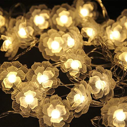ter Lichter Fairy Light Wasserdichte Led-Lichterketten Led Laterne Blinkende Lichterketten Tee Blume Anhänger Hochzeit Innendekoration Batteriekasten@Farbe 1,5 M 10 Lichter ()