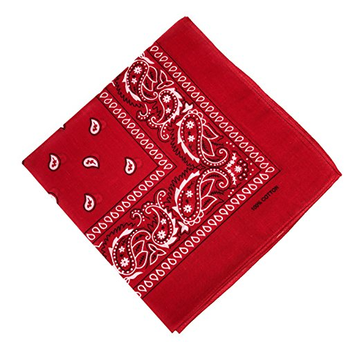 JillyMode Bandana Kopfttuch 100% Baumwolle in vielen Farben Paisley Muster und mehr (H234-Klassik/Rot)