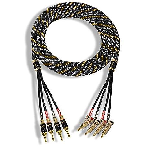 Rembus High-End Lautsprecherkabel | versilbert | Bi-Amping | 1 Paar | 5 Meter | RCS-403-G11 Gold Line
