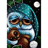 DIY 5D Diamond Painting, Crystal Rhinestone Embroidery Pictures Arts Craft for Home Wall Decor Owl Holding Bear 11.8 x 15.7