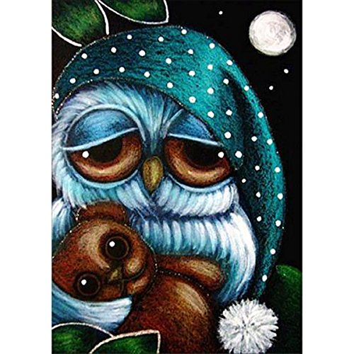 DIY 5D Diamond Painting by Number Kits, Full Drill Crystal Rhinestone Embroidery Pictures Arts Craft for Home Wall Decor Gift,Owl Holding Bear