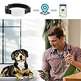 TKSTAR Haustier GPS Tracker mit Kragen, Mini Wasserdichtes GPS Ortung