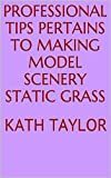 Professional Tips Pertains To Making Model Scenery Static Grass