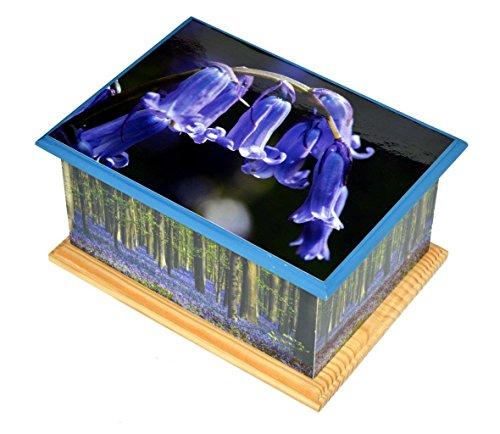 holz-verbrennung-asche-casket-urne-mdf-und-teak-urne-funeral-memorial-remembrance-urne-bluebell