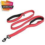 MEKEET Large Dog Lead Leash, 1.5m Double Handles Dog Lead Heavy Duty Strong Nylon Reflective Dog Leash with 2 Padded… 15