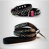 Lushpetz Designer Schwarz Braun Weiß Hund Welpen Halsband und passende Leine Set XS klein medium Größe