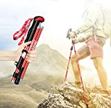 Yuan Ju Nordic Walking Bergsteigen Wanderweg Stöcke, Wanderstöcke/Wanderstöcke