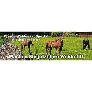 Happy Horse Weidesaat Kräuter Spezial für Pferde