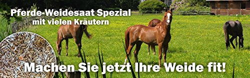 Weidesaat Kräuter Spezial für Pferde