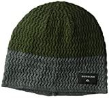 Quiksilver Herren Cushy Color Block Beanie Mütze (Skull Cap) - grün -